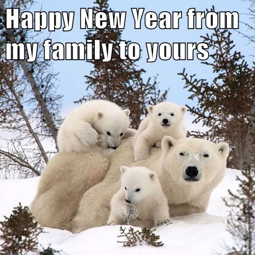 Polar Bear mother and 3 kids   Happy New Year from my family to yours [text]